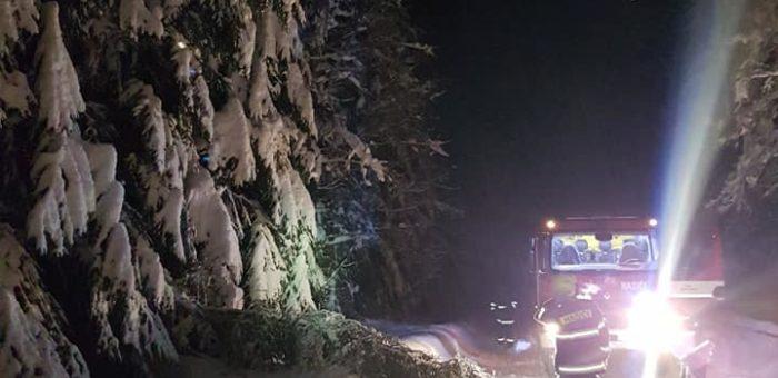 Popadané stromy Pustevny – Bumbálka