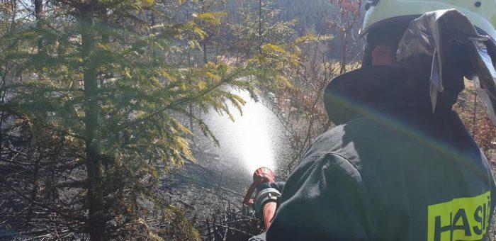 Požár lesního porostu Kněhyně